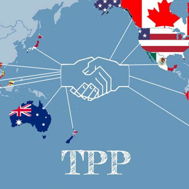 Vietnam's TPP Patification